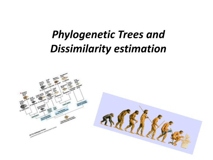 Phylogenetic trees and dissimilarity estimation