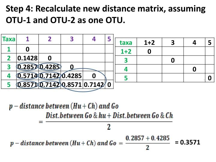 Step 4: Recalculate new distance matrix, assuming