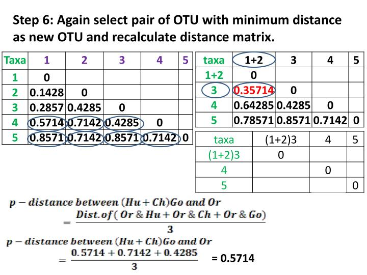 Step 6: Again select pair of OTU with minimum distance as new OTU and recalculate distance matrix.