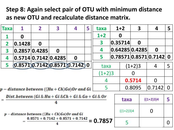 Step 8: Again select pair of OTU with minimum distance as new OTU and recalculate distance matrix.
