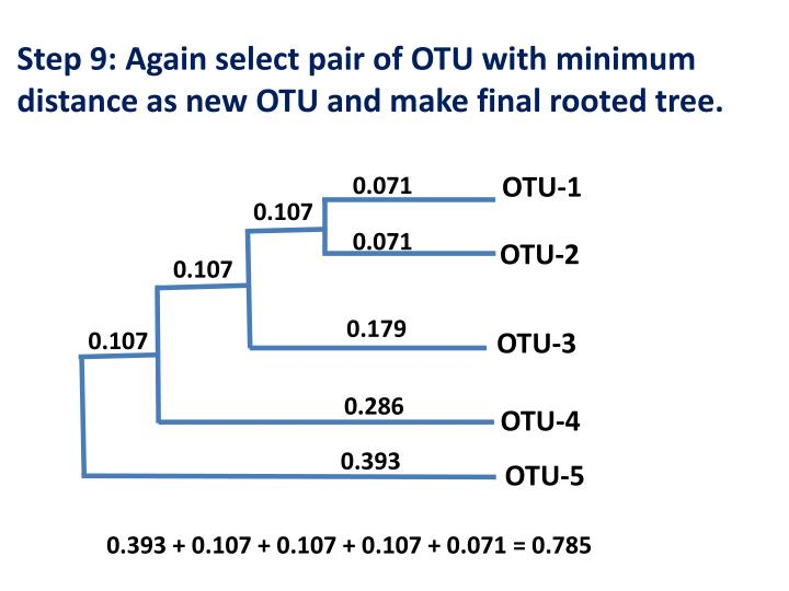 Step 9: Again select pair of OTU with minimum distance as new OTU and make final rooted tree.