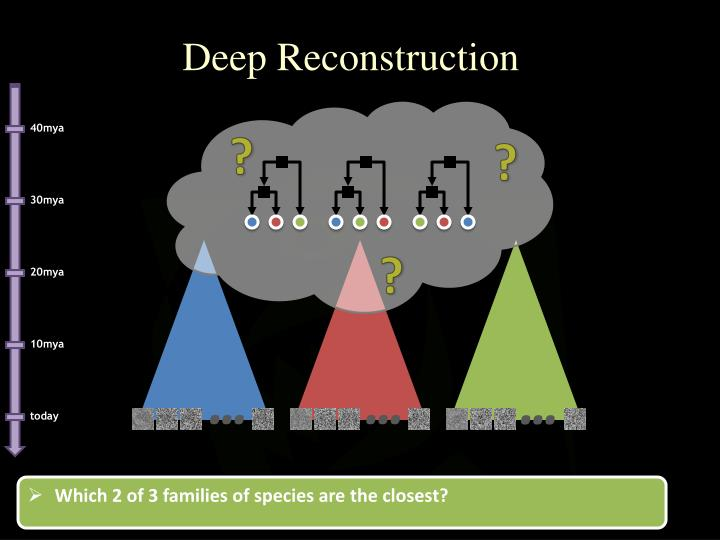 Deep Reconstruction