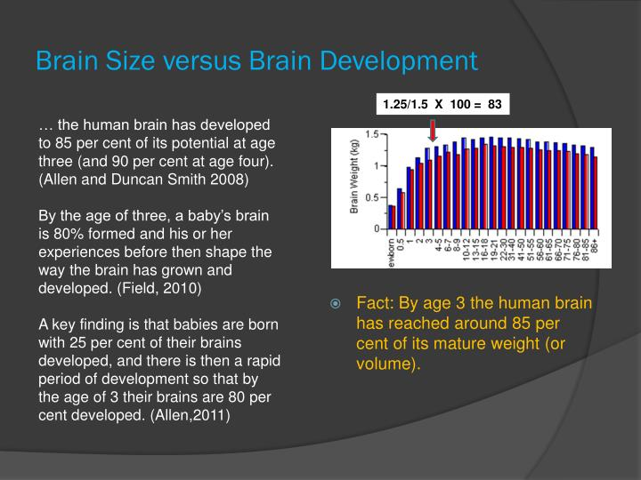 Brain Size versus Brain Development