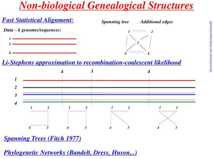 Non-biological Genealogical Structures