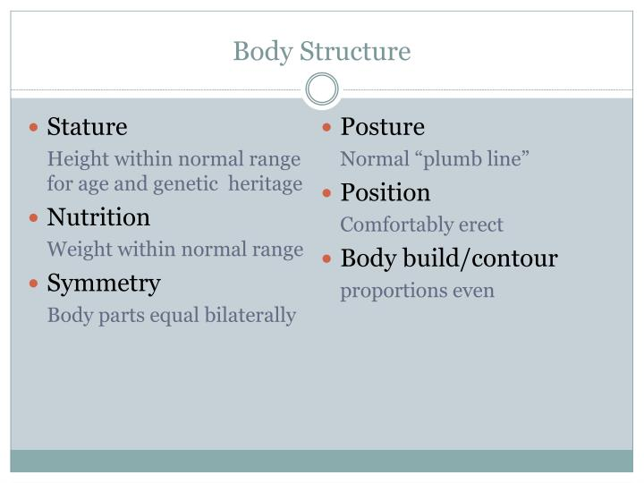 Body Structure