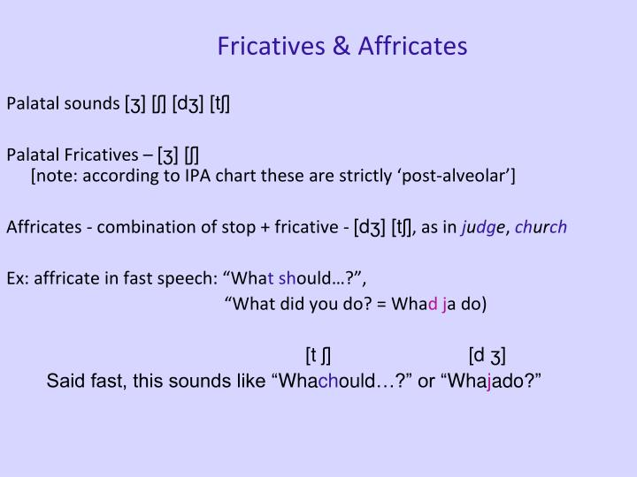 Fricatives & Affricates