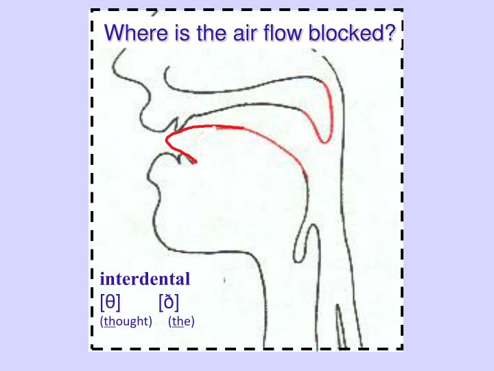 Where is the air flow blocked?