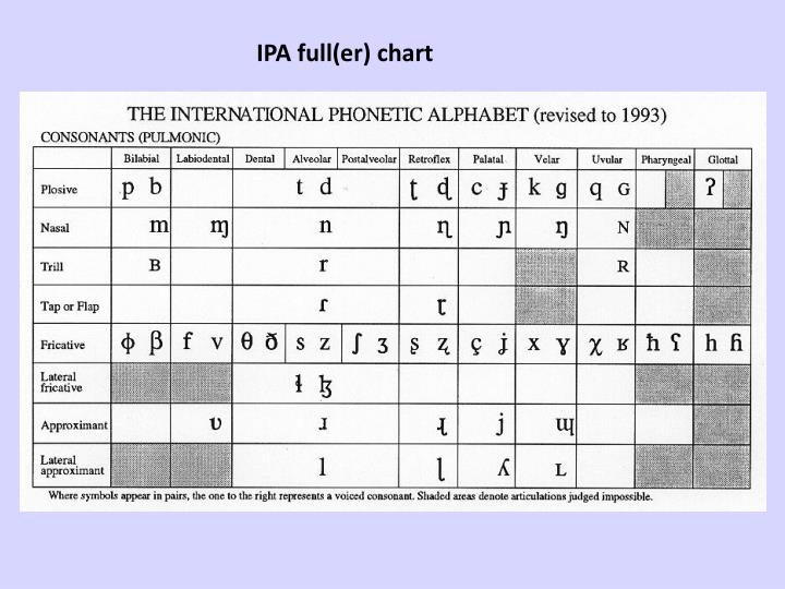 IPA full(