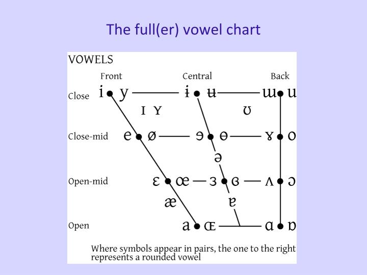 The full(er) vowel chart