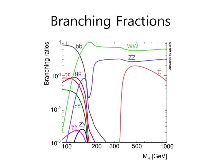 Branching Fractions