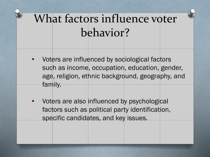 What factors influence voter behavior?