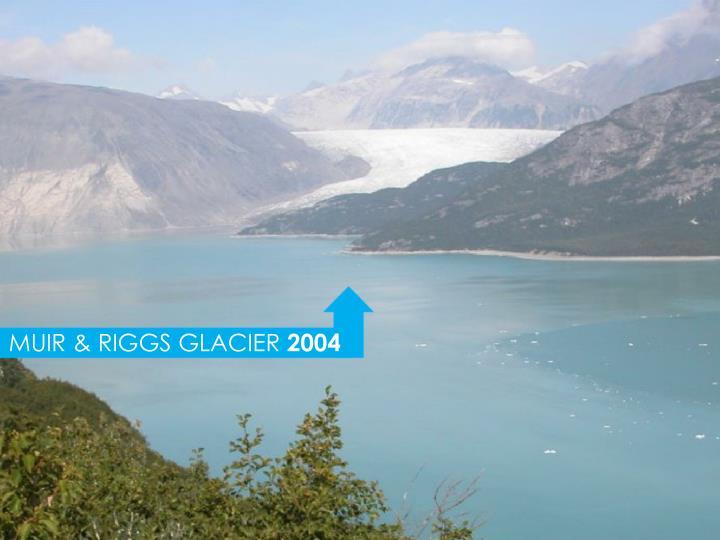 MUIR & RIGGS GLACIER