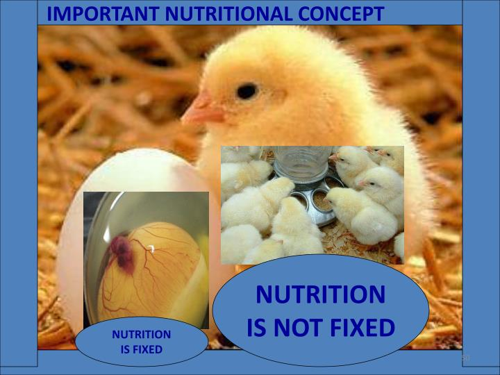 IMPORTANT NUTRITIONAL CONCEPT