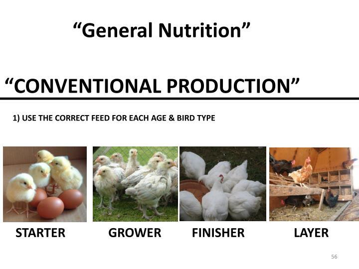 """General Nutrition"""
