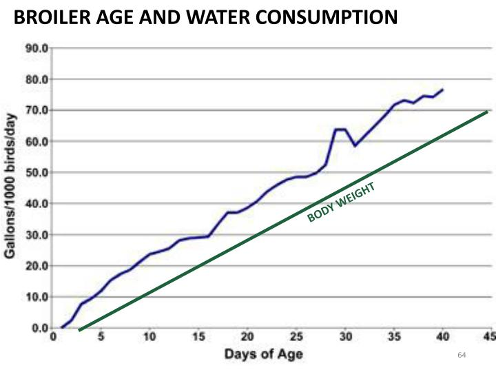 BROILER AGE AND WATER CONSUMPTION