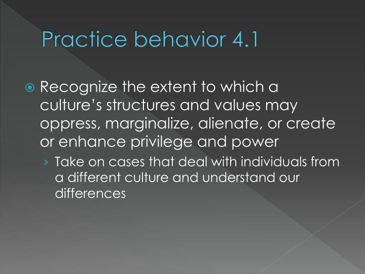 Practice behavior 4.1