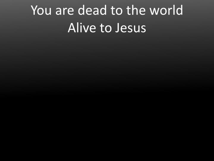 You are dead to the world