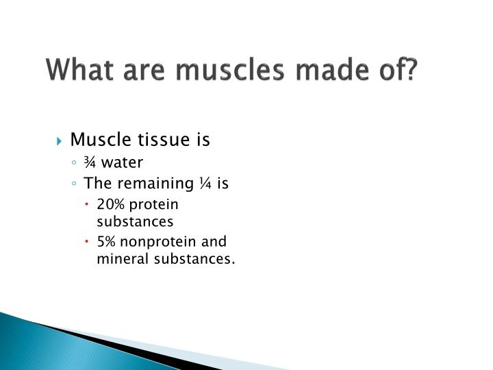 What are muscles made of?