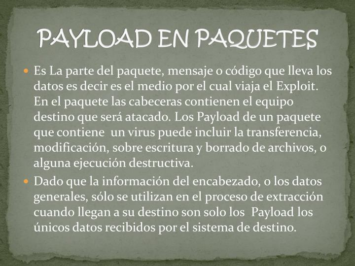 PAYLOAD EN PAQUETES