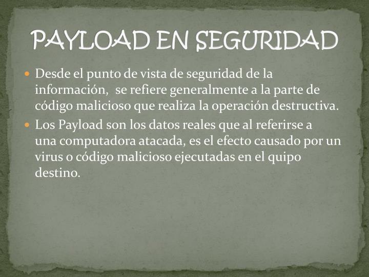 PAYLOAD EN SEGURIDAD