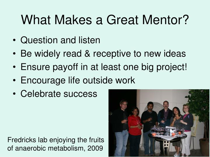 What Makes a Great Mentor?