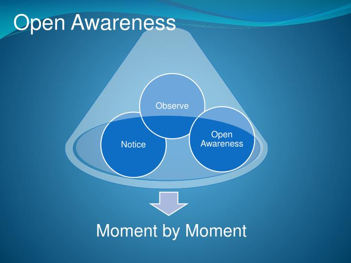 Open Awareness
