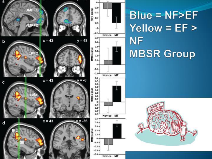 Blue = NF>EF