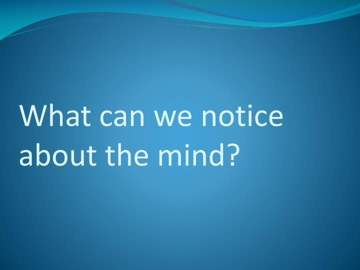 What can we notice about the mind?
