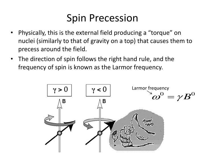 Spin Precession