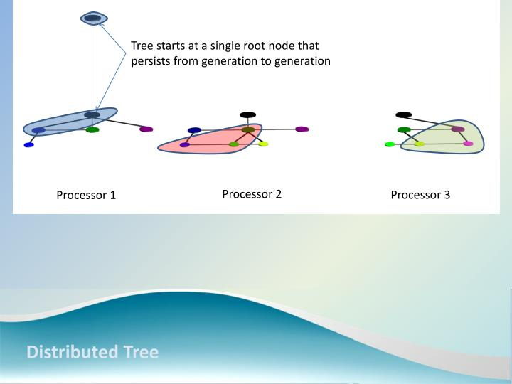 Tree starts at a single root node that persists from generation to generation