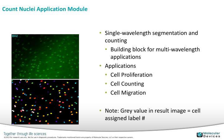 Count Nuclei Application Module