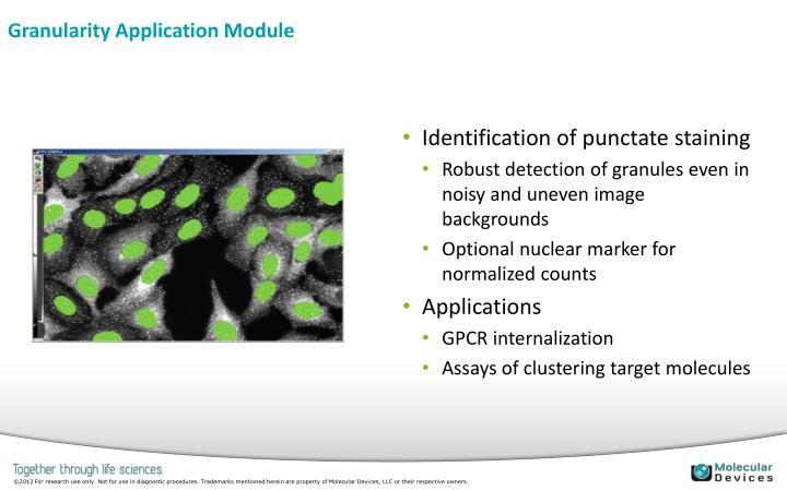Granularity Application Module