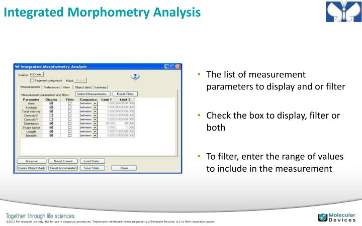Integrated Morphometry Analysis