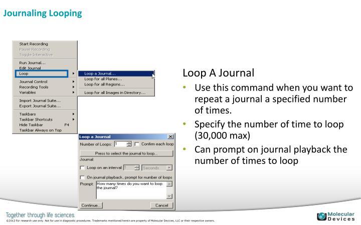 Journaling Looping