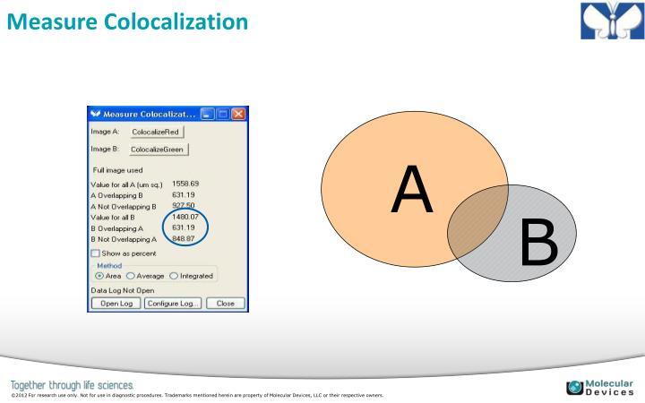 Measure Colocalization