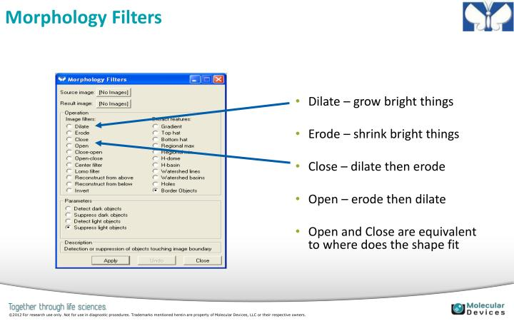 Morphology Filters