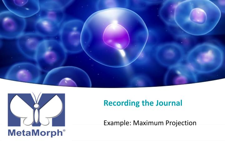 Recording the Journal
