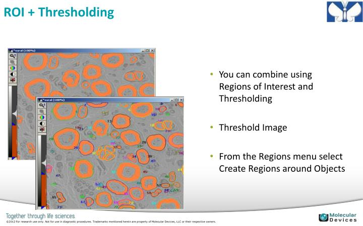 ROI + Thresholding