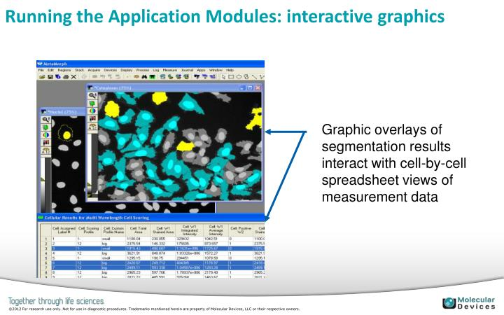Running the Application Modules: interactive graphics