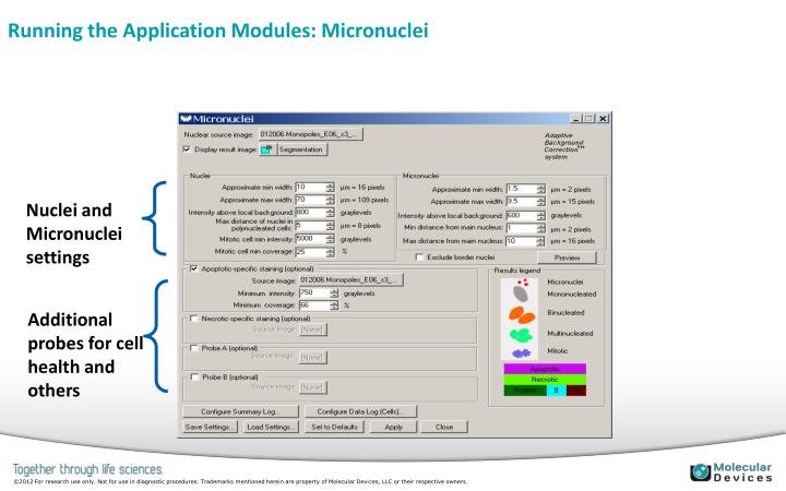 Running the Application Modules: Micronuclei