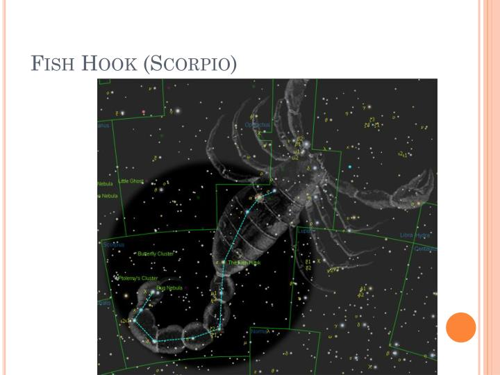 Fish Hook (Scorpio)