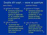 double slit expt wave vs quantum