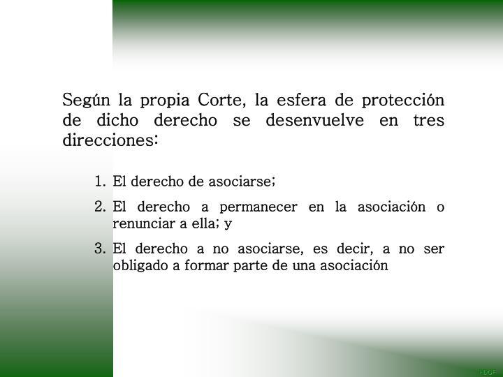 Según la propia Corte, la esfera de protección de dicho derecho se desenvuelve en tres direcciones: