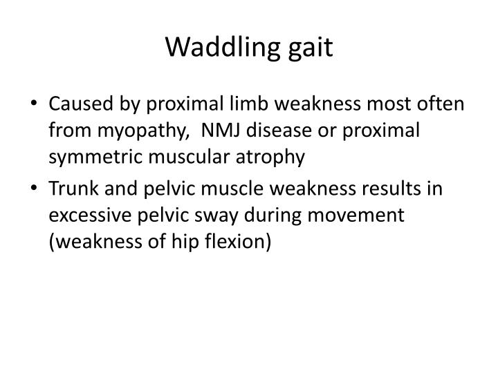Waddling gait