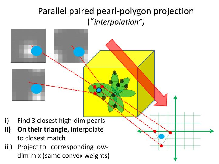Parallel paired pearl-polygon projection (""