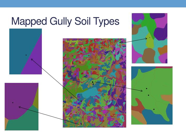 Mapped Gully Soil Types