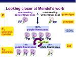 looking closer at mendel s work1