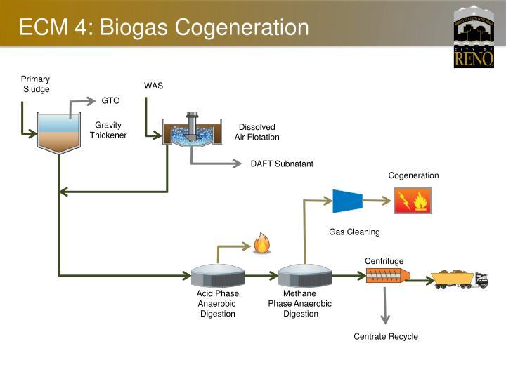 ECM 4: Biogas Cogeneration
