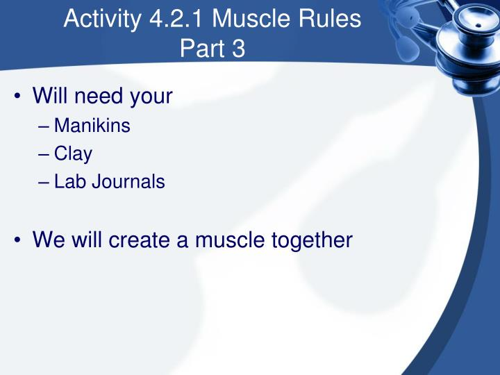 Activity 4.2.1 Muscle Rules