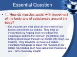 essential question7